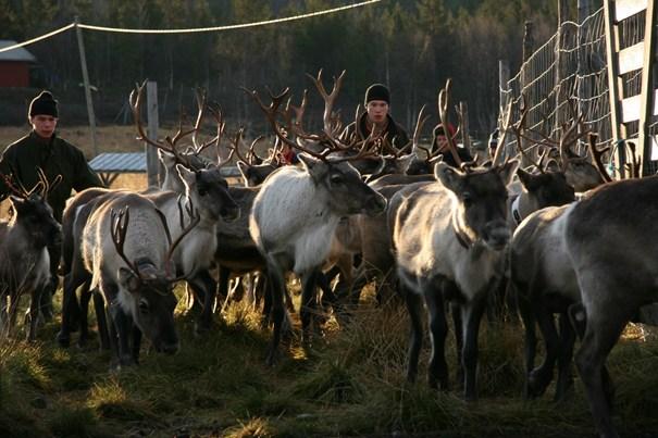 Kaamanen, Finland