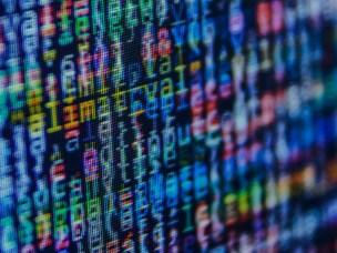 NMBU får 30 nye studieplasser innen robotikk og datavitenskap