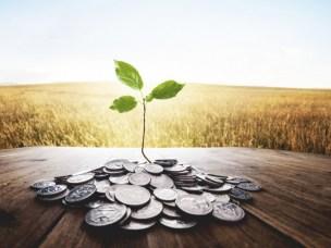 Handelshøyskolen satser på bærekraftig finans