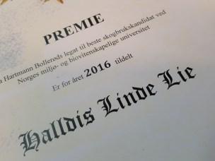 Beste skogbrukskandidat: Halldis Linde Lie