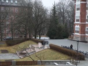 Alperipshekken foran Urbygningen skal ersattes med ny hekk i løpet av 2017.