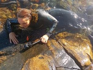 I prosjektet Fra to verdener til ett landskap – den urbane fjæra som potensielt opplevelseslandskap undersøker doktorgradsstudent Elin Tanding Sørensen den urbane strandsonen, der vann møter land i byen.