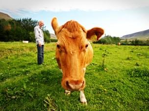 Skal undersøke sammenhenger mellom helsen til mennesker og dyr