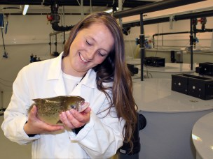 New findings can revolutionize aquaculture