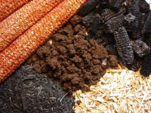 Senk temperaturen i biokullproduksjon