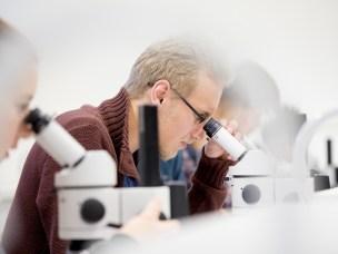 Veterinærstudenter som ønsker det kan søke seg til forskerlinjen. Linjen gir muligheter for å begynne forskningskarrieren samtidig med veterinærstudiet.