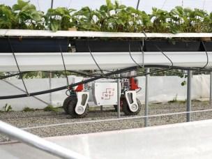 Roboten Thorvald imponerte moderniseringsministeren