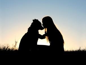 Hund og menneske