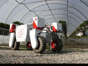 På sommerleir med jordbærplukkende robot