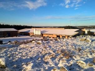 Ås gård i februar 2015. 8. mars åpner Statsbygg dørene på gløtt for alle interesserte fra 12 til 14. Dyrene flytter inn i løpet mars og april.