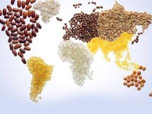 Global food law
