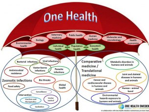 Illustrasjon fra http://www.onehealthinitiative.com