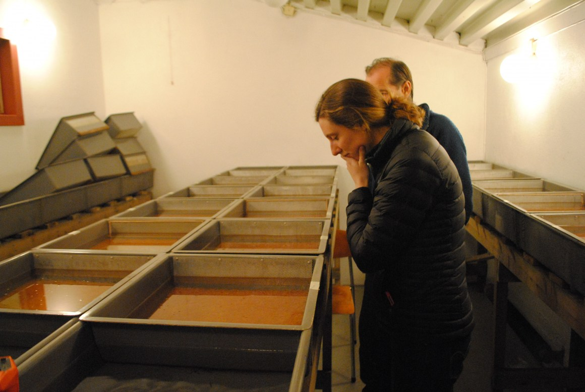 PhD candidate Hannah Harrison inspects fish eggs at a hatchery near Lillehammer, Norway.