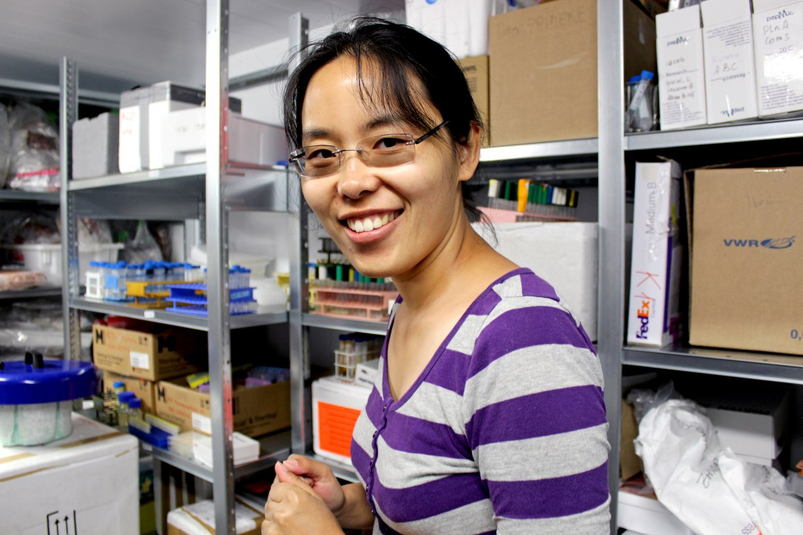 Peng Lei works with cell cultures from fish that has been fed new, sustainable diets developed by Foods of Norway.