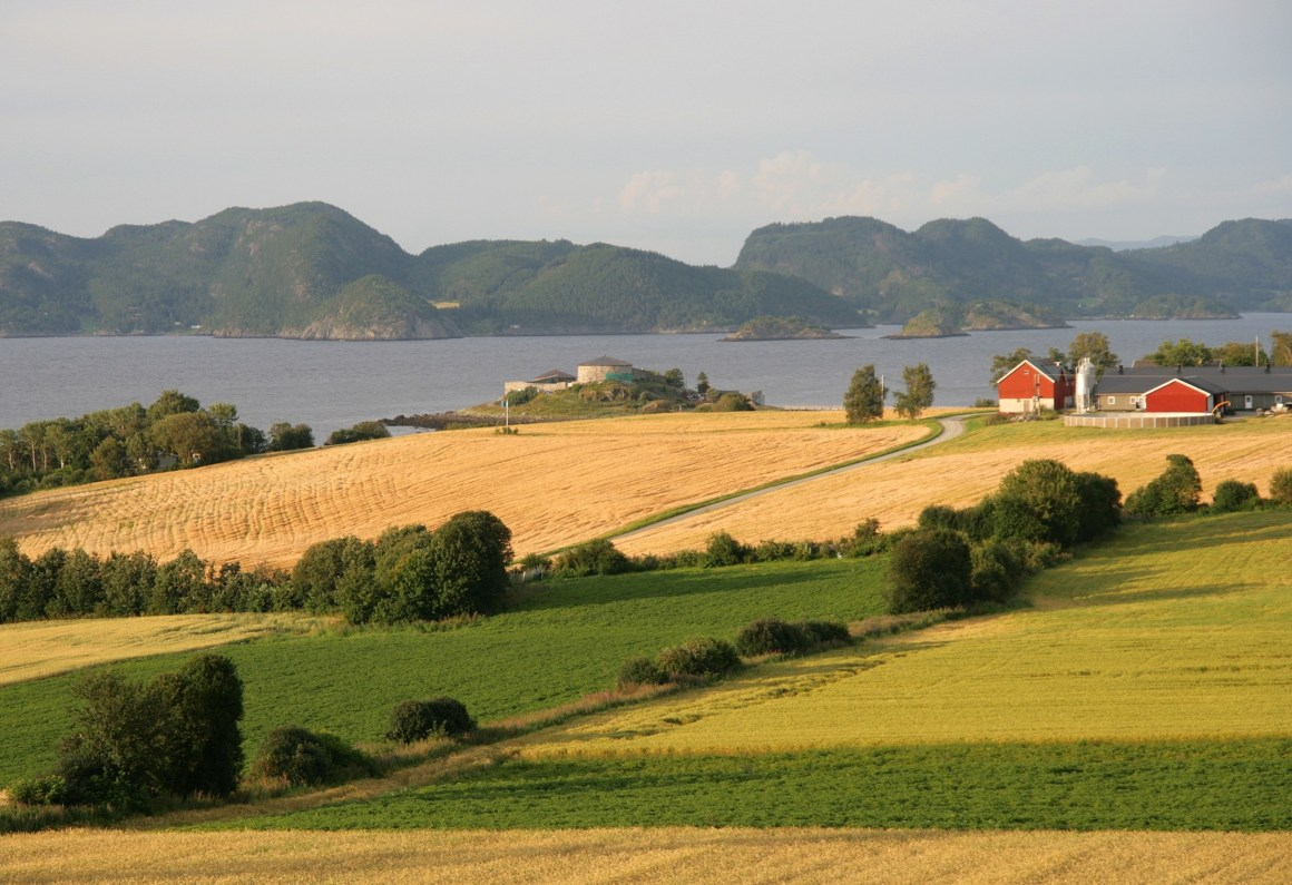 Foods of Norway aims to increase value creation in the Norwegian aquaculture, meat and diary industries.