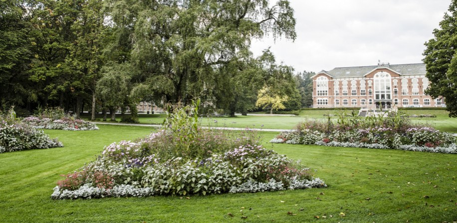 Parken på Campus Ås i full blomst